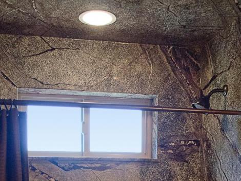 Sand Swirl 39 S Mold Resistant Shower Ceiling